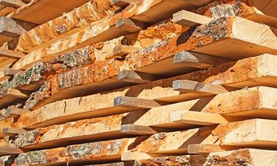 duurzaam hout op maat gezaagd Amsterdam